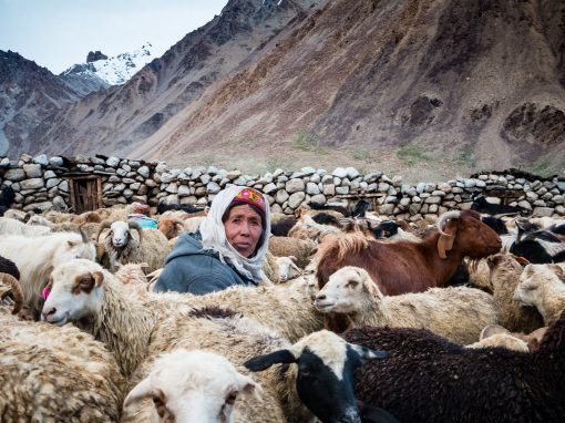 The Last Wakhi Shepherdesses