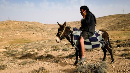 Asia, Dana, JO, JOR, Jordan, Tafilah province, Wadi Dana, attitude, bedouin, contrasts, donkey, dry, eco tourism, environment, heat, horizontal, ignorance, innocence, male, man, middle-east, morning, mountain, nature, one person only, outdoor, park, phone, reserve, steppe, sun, travel, valley, wealth